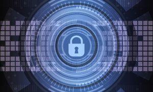 seguro cyber